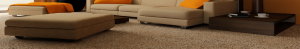 upholstery cleaning newhall