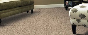 upholstery cleaning north hills
